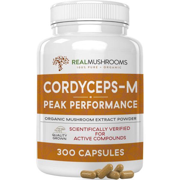 cordyceps 300